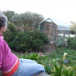 Adopter enjoying the aviary she built for rescued king pigeons