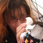 Volunteer reassuring king pigeon at first outreach event