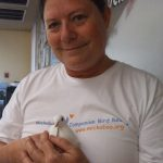 Mickaboo volunteer with rescued dove