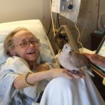 Hospice patient enjoying a visit with a dove