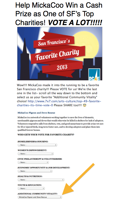Help MickaCoo Win Cash & Reconition as SF Top Charity 2013