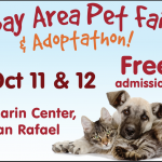 The Bay Area Pet Fair features the MOST adoptable pets in one place in the Bay Area!
