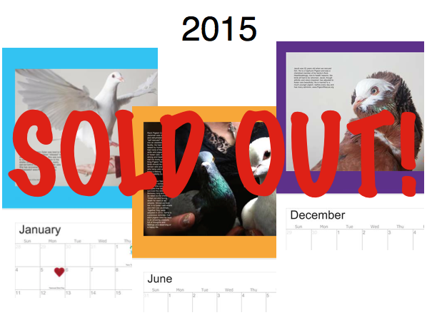 2015-Calendar-Promo- sold out