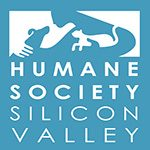 HSSV partners with MickaCoo to foster pigeons in their lobby