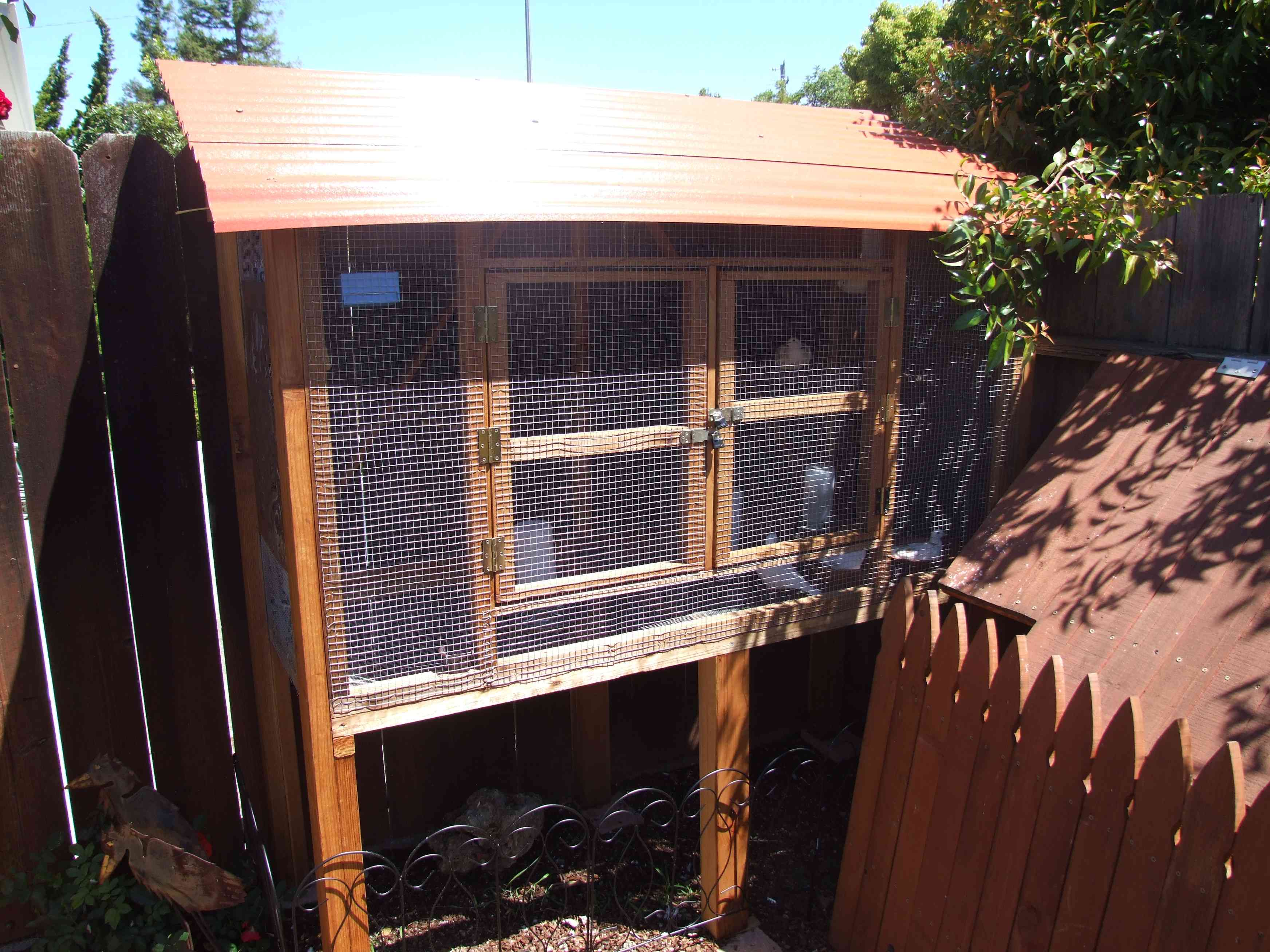 How to Choose a Cage for Pigeons or Doves |