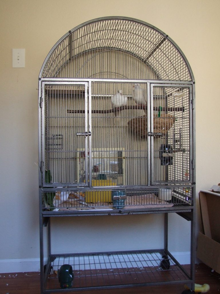 This flight cage makes a great indoor cage for 1-2 doves