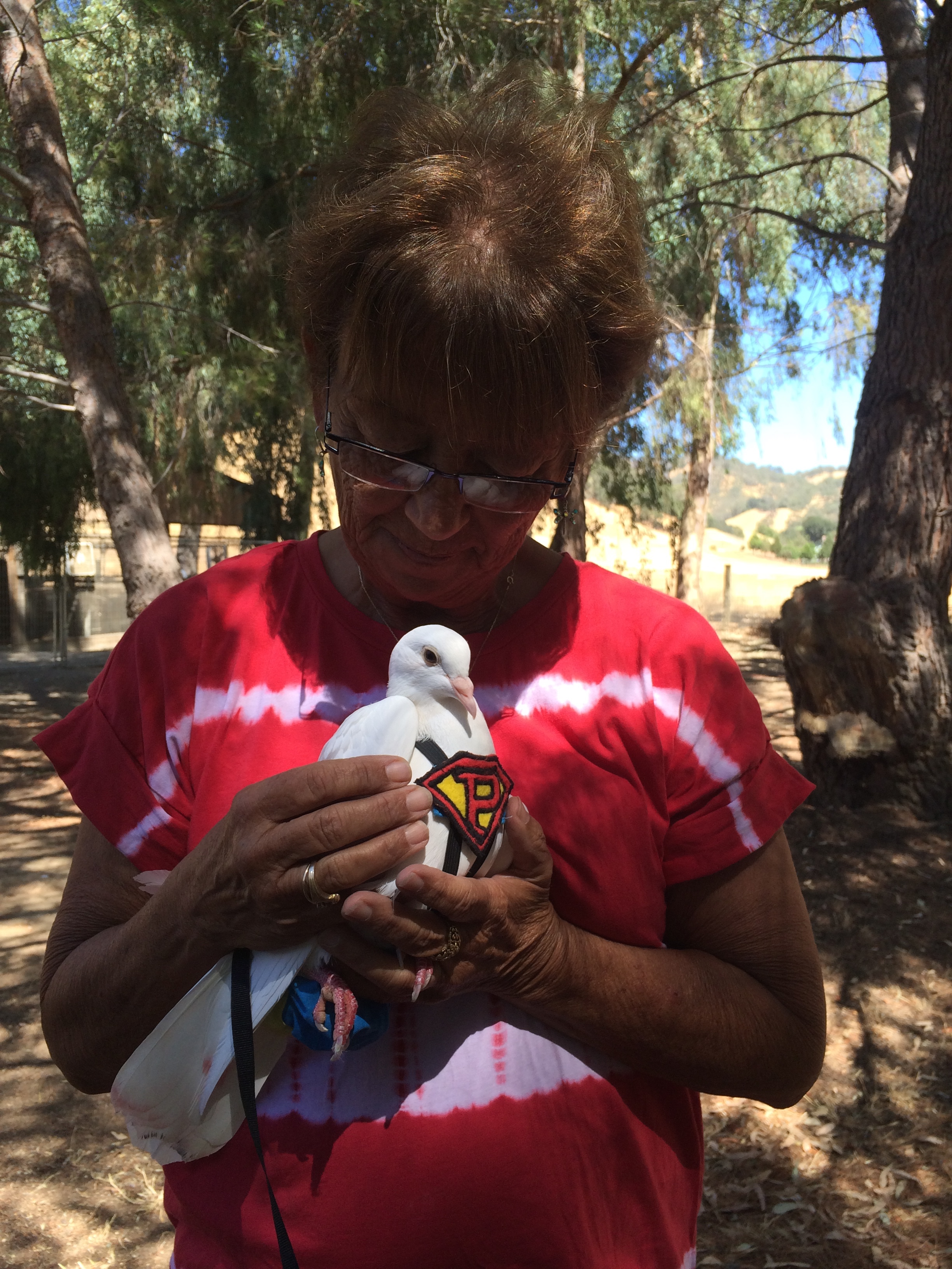 Woman lovingly holding a rescued King Pigeon