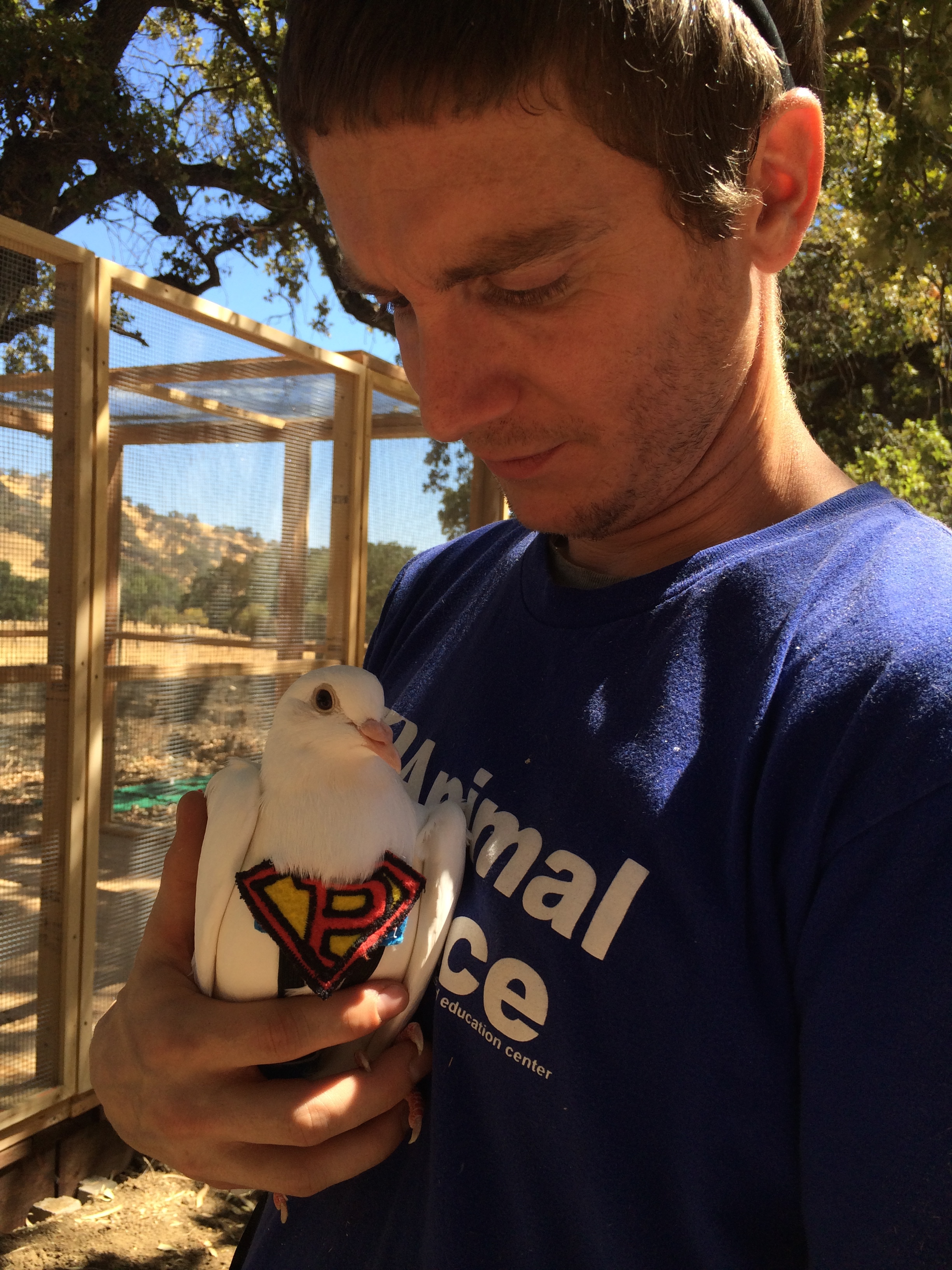Blake, an animal care provider at Animal Place, loving on Snowberry
