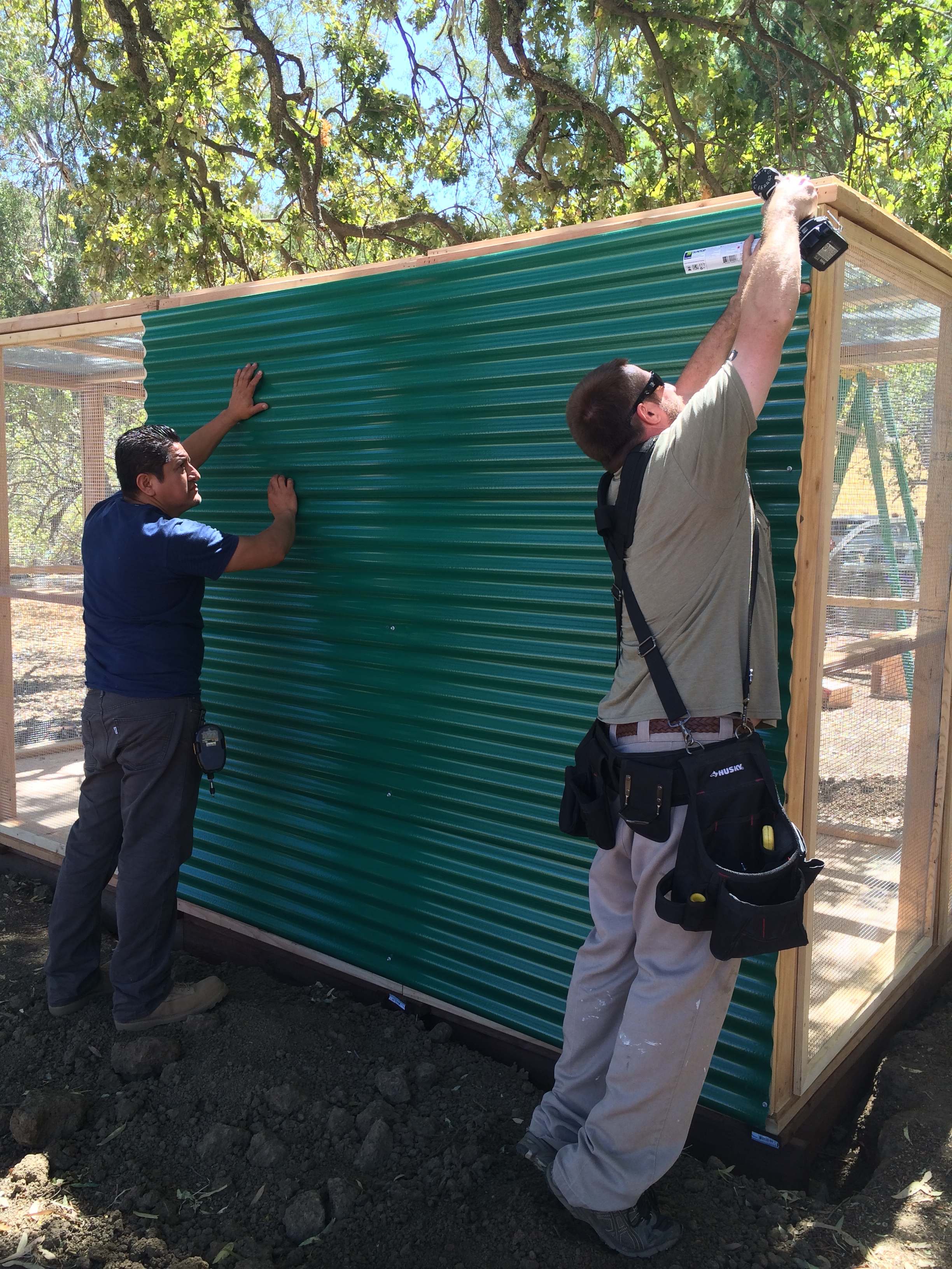 After the enclosure was up, a half roof & siding was added to half of the back & one side for shelter from weather, shade & security