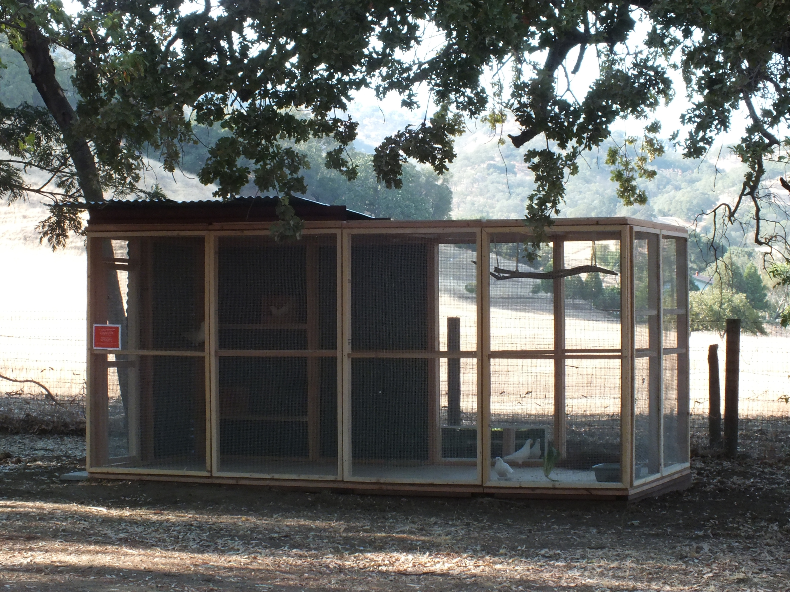 Finished avairy is half sheltered, half open