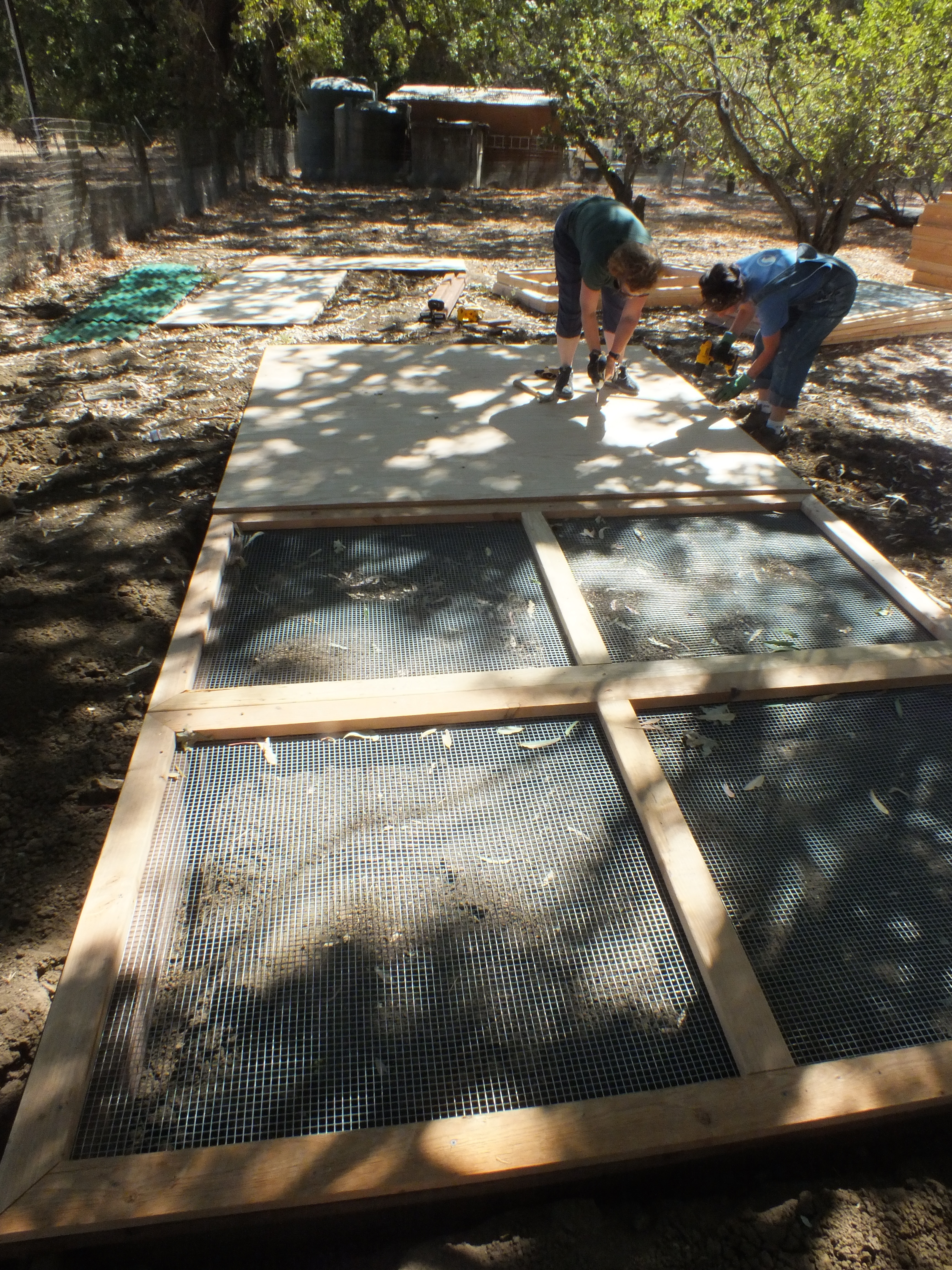Volunteers Ellie & Helen attach the smooth aviary floor (marine grade plywood) to the predator & rodent-proof base.