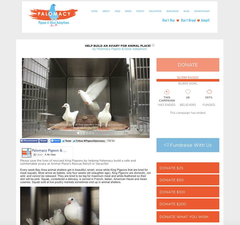 Successful crowdfunding campaign to build King Pigeon aviary