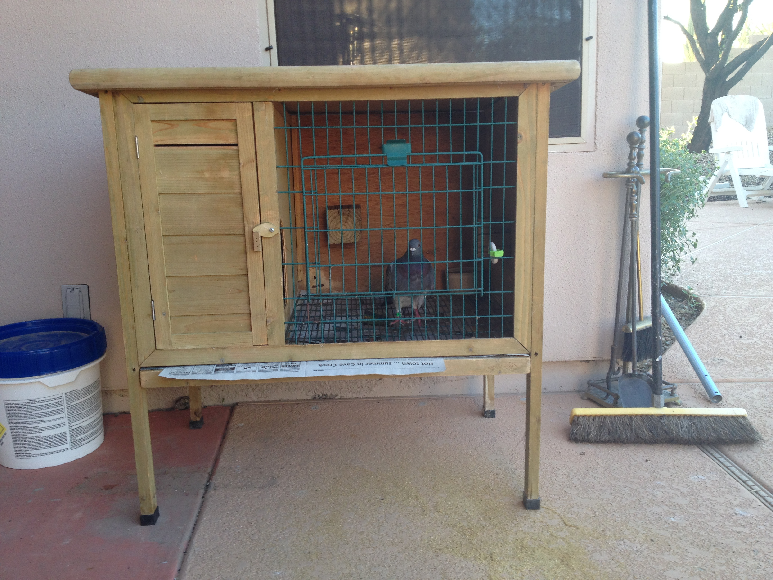 Aviary in the apartment for a dog with their own hands. Keeping dogs at home 8