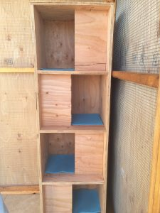 This nest box tower will accomodate four mated pairs