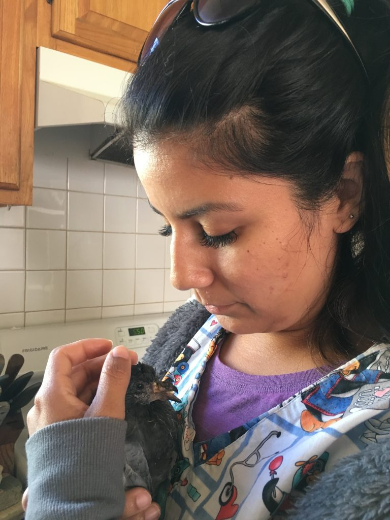 Tania with Prince, the baby pigeon whose life she saved