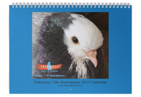 Palomacy 2017 Calendars